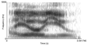 Spectrogram_of_I_owe_you